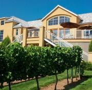 MONTECRISTO: Tinhorn Creek Vineyards