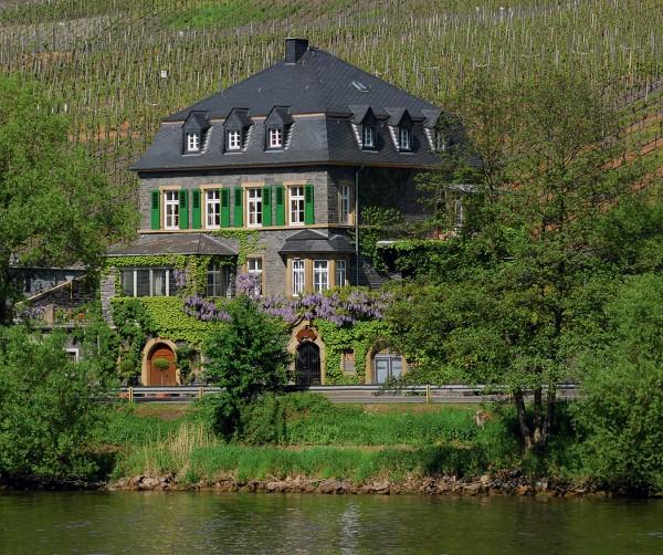 MONTECRISTO: The Dr. Loosen Estate