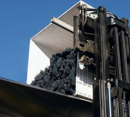 MONTECRISTO: Poplar Grove Winery
