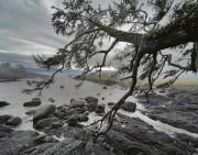 MONTECRISTO: Storm Watching in Ucluelet