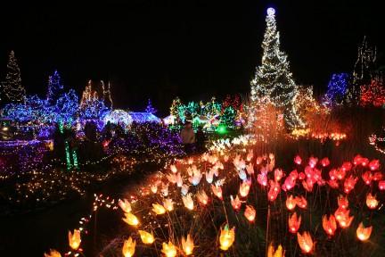 MONTECRISTO Blog: Joshua McVeity, VanDusen Gardens