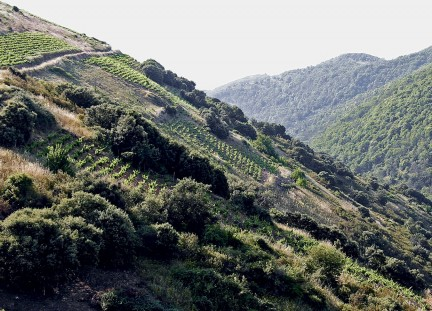 MONTECRISTO Magazine: Priorat, Spain