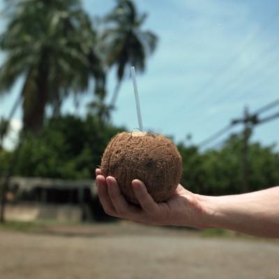 MONTE Blog: Maui, HI