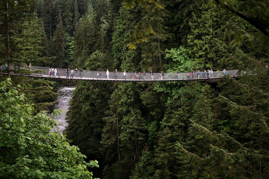 MONTE Blog: Capilano Suspension Bridge