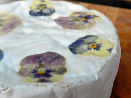 MONTECRISTO Blog: Cheese with Blossoms Recipe
