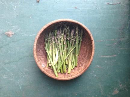 MONTECRISTO Blog: Spring Gardens