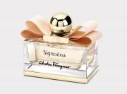 MONTE Summer 2014: Signorina Eleganza