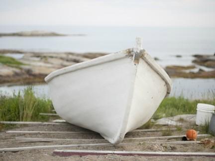 MONTE Blog: Newfoundland Lobster