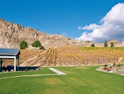 MONTECRISTO Magazine: Meyer Family Vineyards