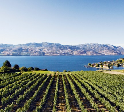 MONTE Magazine: Quails' Gate Winery