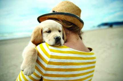 MONTECRISTO Blog: SPCA National Cupcake Day