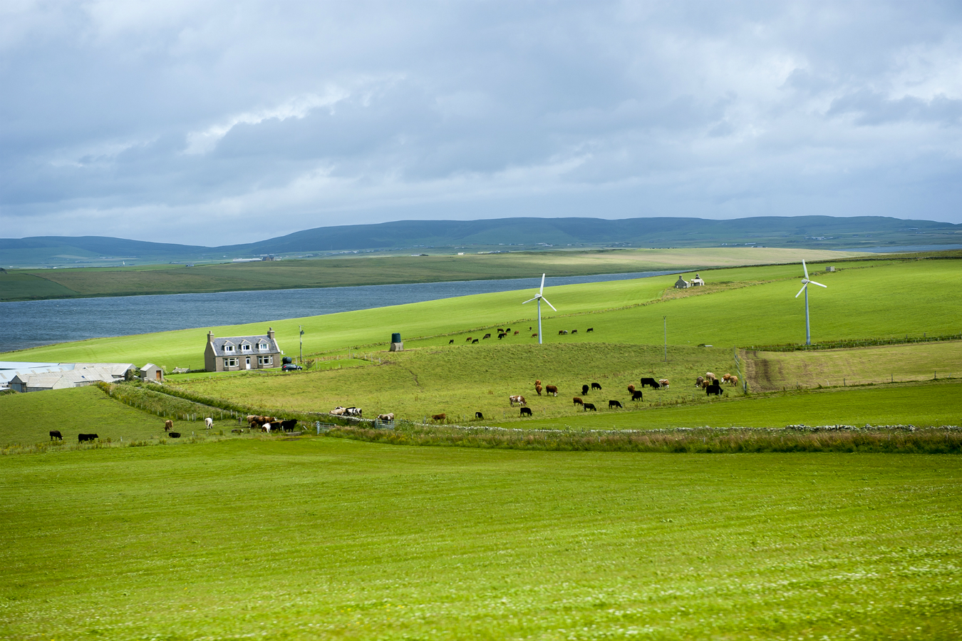 MONTE Blog: Orkney, Scotland