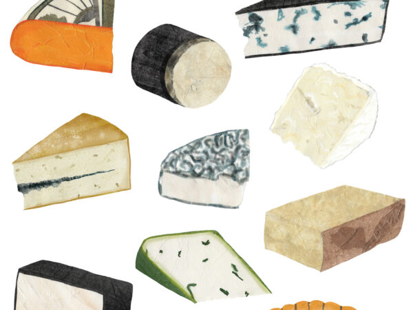 How to Prepare The Perfect Cheese Plate in Vancouver