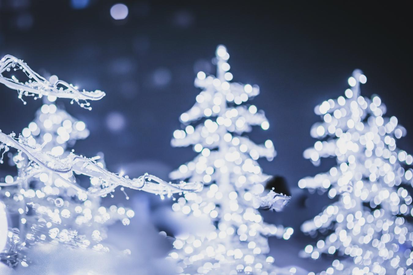 enchant christmas arlington tx prices