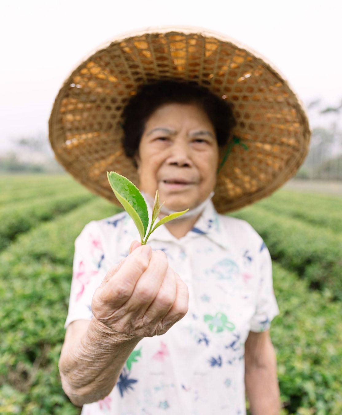 Taiwanese tea and Grandma