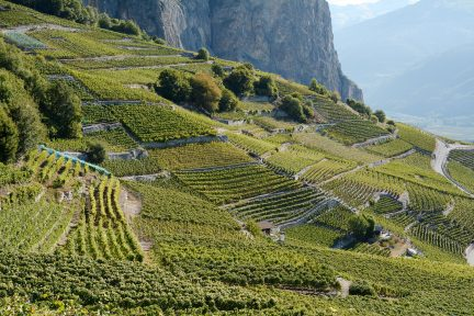 Switzerland wine trail