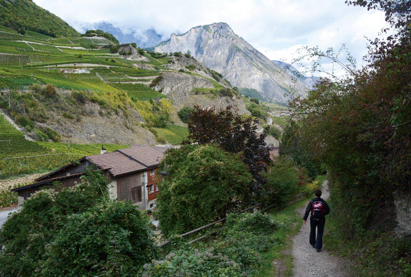 Switzerland wine trail