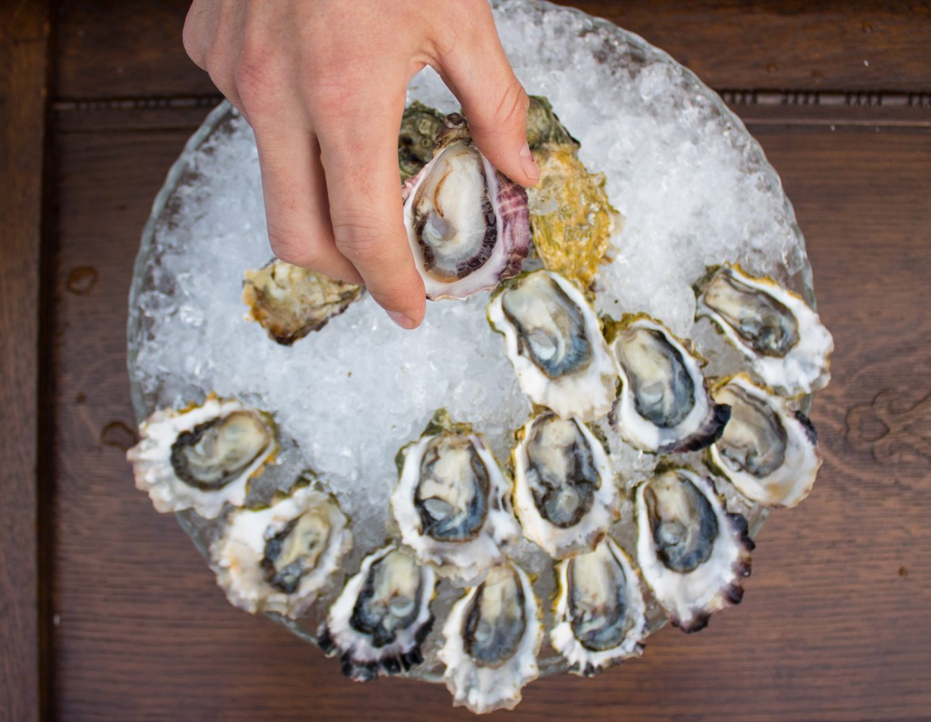 The Curious Oyster Catering Co. | MONTECRISTO