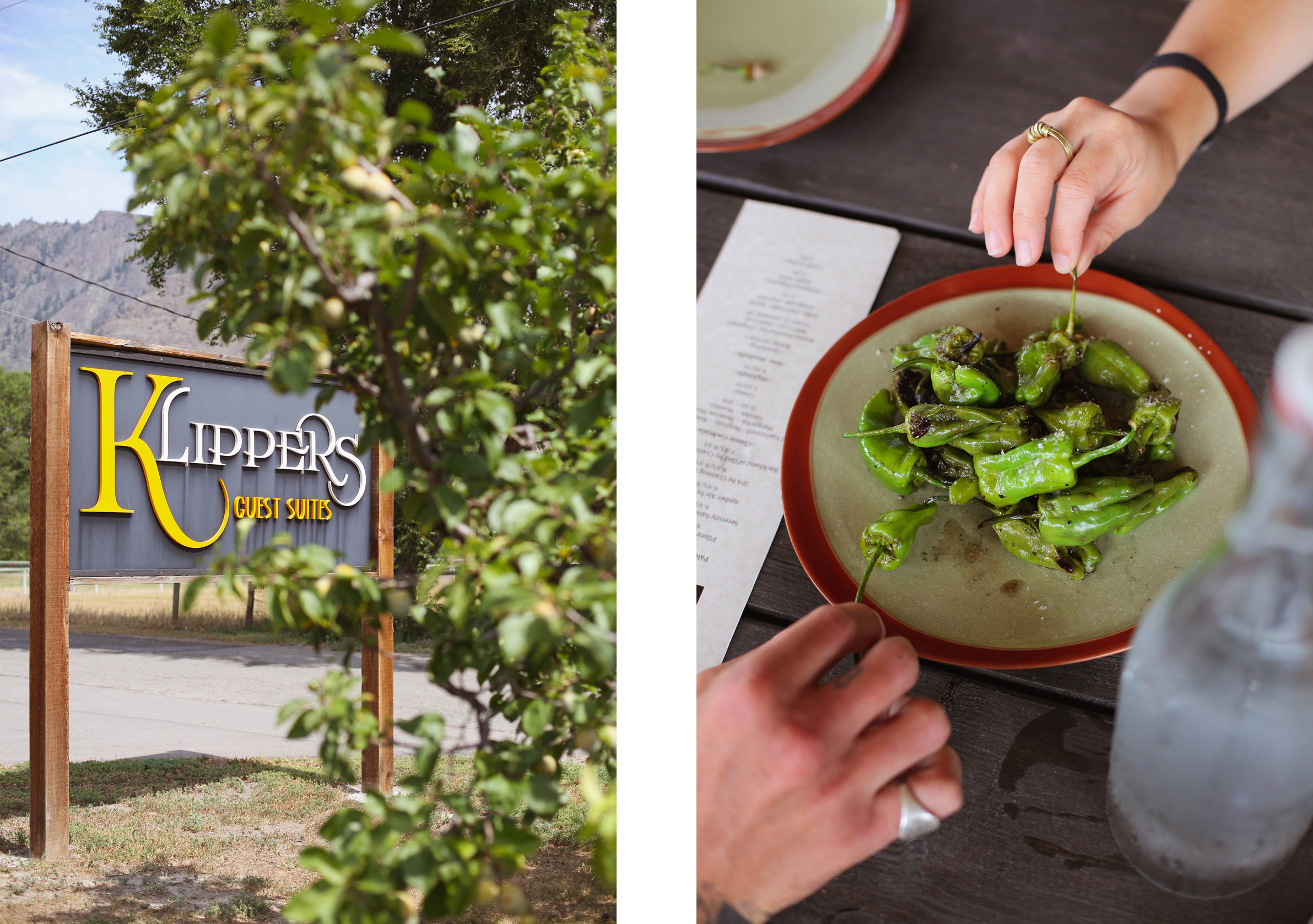 Padron peppers at Row Fourteen and Klippers Guest Suites