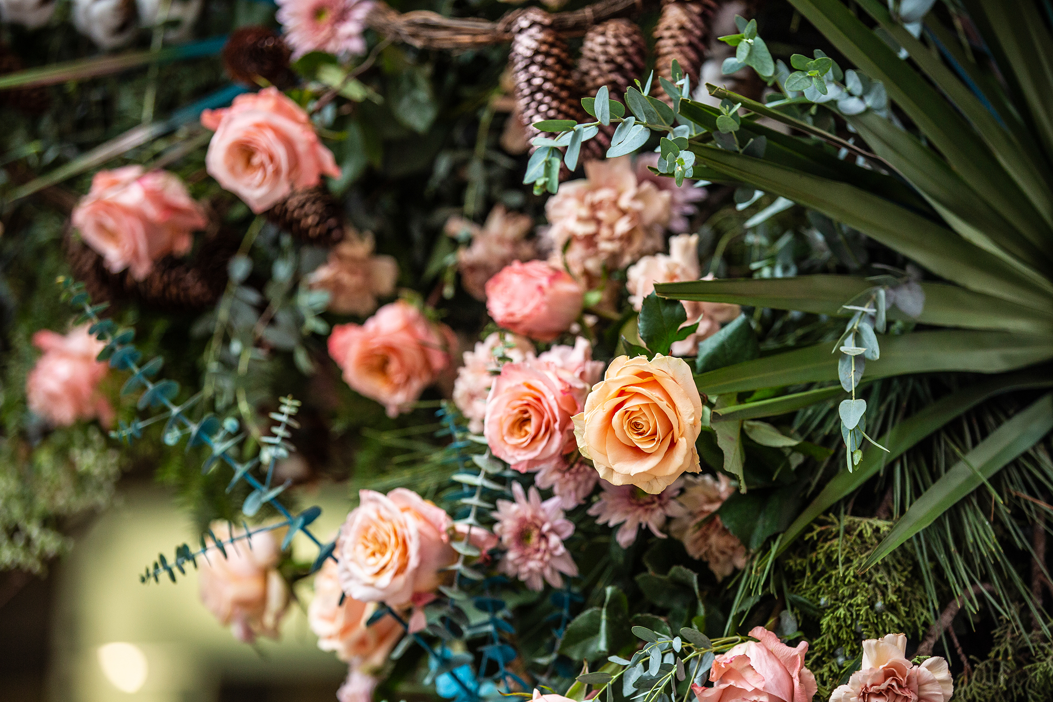Fleurs De Villes Flower Bombs Alberni Street A Photo Essay Montecristo