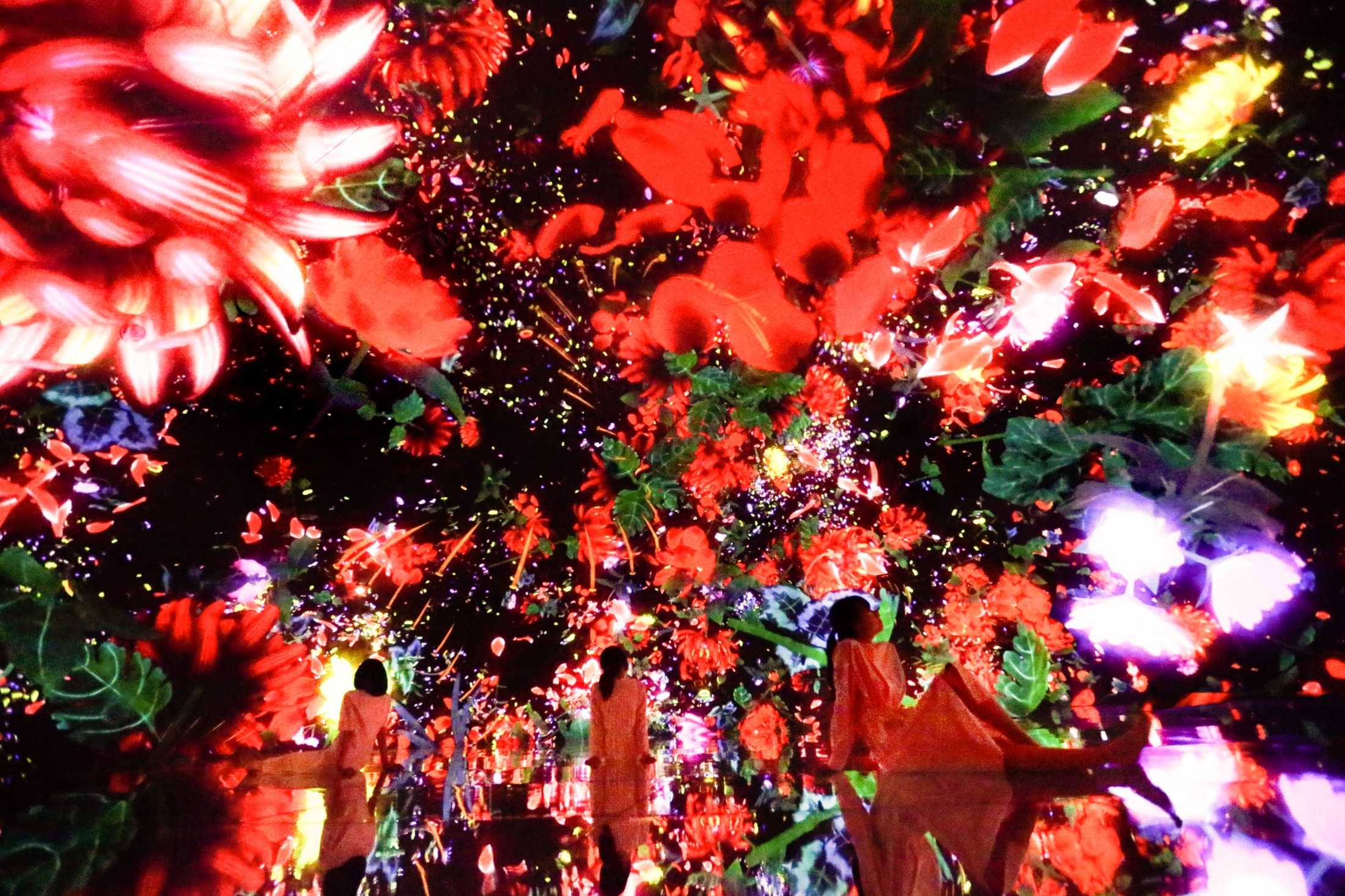 teamLab, Floating in the Falling Universe of Flowers, 2016-2018, Interactive Digital Installation, Endless, Sound: Hideaki Takahashi.