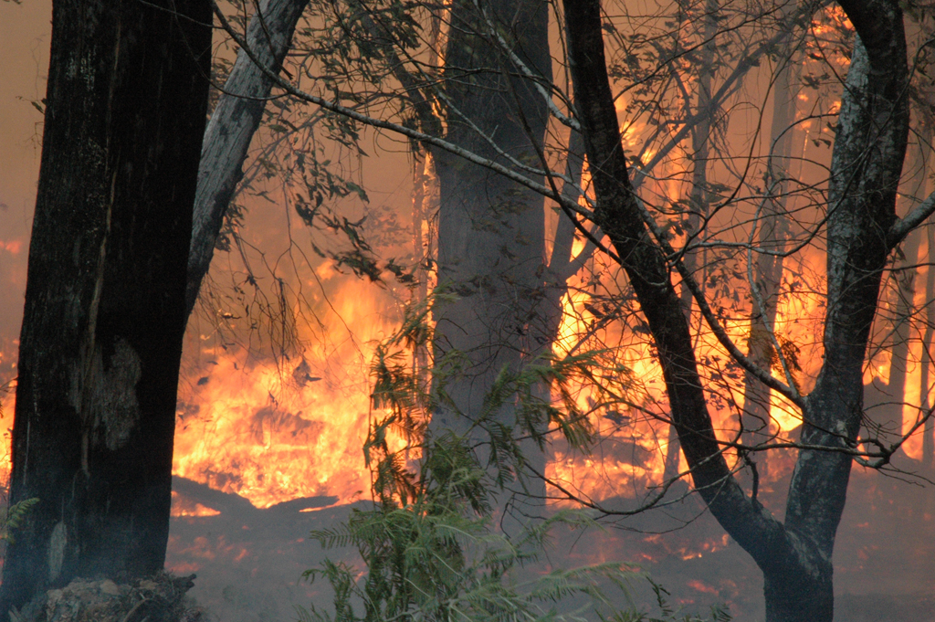 Australia bushfire 2007
