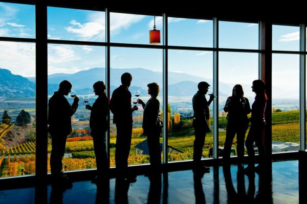 Virtual Tastings to Free Shipping: What Will It Take for B.C.'s Wineries to Survive COVID?