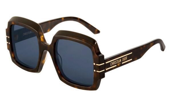 DiorSignature S1U Sunglasses